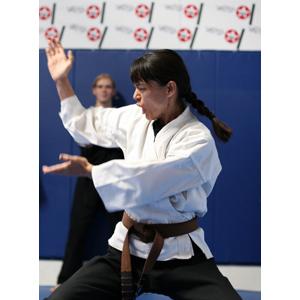 Karate_expert__web_